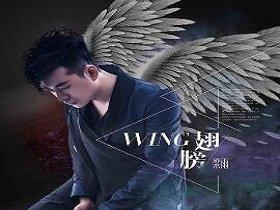 梁雨 – 翅膀 (抖音热度160万).高品质音乐mp3+歌词版-百度网盘免费下载