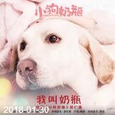 陈雪凝[SherlyChan]《音乐数字专辑+EP单曲(共30首)》合辑mp3版-百度云网盘下载