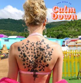 霉霉《You Need To Calm Down》高品质音乐mp3+歌词版-百度网盘下载