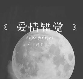 半吨兄弟 – 爱情错觉(抖音热歌).高品质音乐mp3+歌词版-百度网盘免费下载