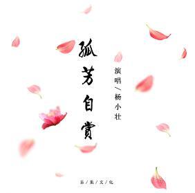 杨小壮 – 孤芳自赏(热歌▪推荐).[FLAC无损音乐+高品质mp3]-歌词-百度网盘下载-江城亦梦
