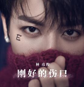 林彦俊《刚好的伤口》音乐专辑mp3-百度网盘下载-江城亦梦