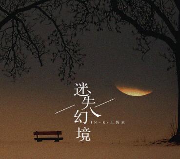 IN-K / 王忻辰《迷失幻境》小众音乐专题系列-下载